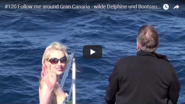 ElischebaTV_120_640x360 Wilde Delphine auf Gran Canaria