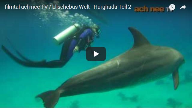 filmtal_ach_nee_TV_ElischebasWelt_640x360 Hurghada Teil 2